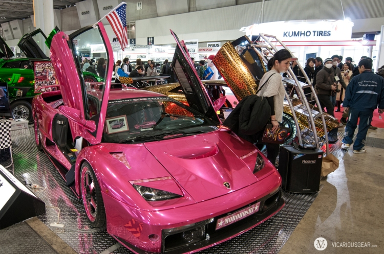 Pink and Leopard chrome Lamborghinis... I think she wanted one.
