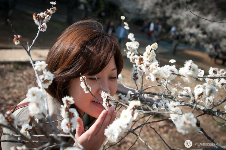 Mimi taking in the different scents provided by the blossoms. Unfortunately, my nose was a bit stuffed.