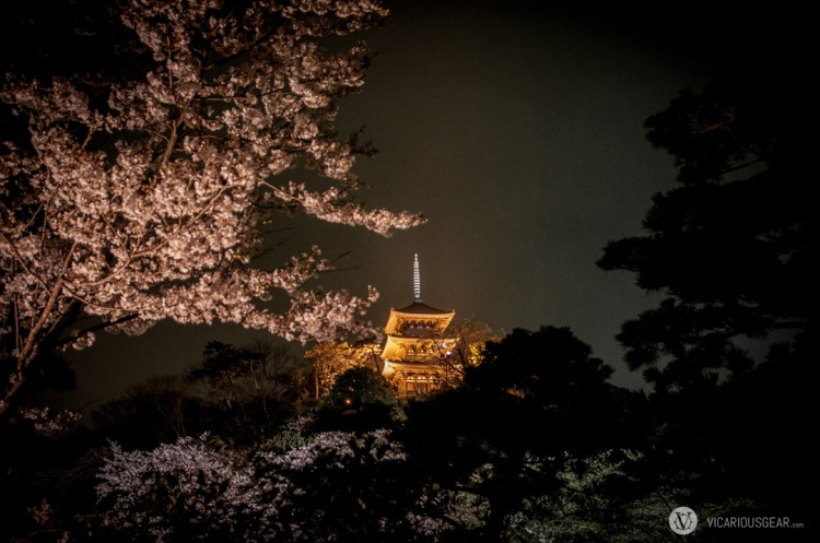 One last view of the pagoda with some pinkish blossoms.