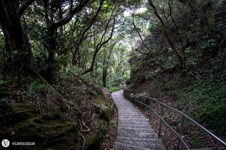After descending from the chiseled stone, the path became quite nicely paved.